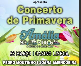 Amalia_Primavera_2016_detalhe